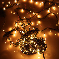 Christmas Lights Outdoor Garden Christmas Tree Decorative Lights Party Twinkle Bulbs 4 Meters 100 Lights