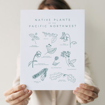 native plants of the pacific northwest print