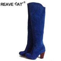 REAVE CAT Winter boots Women shoes High heels Women knee boots