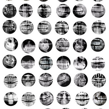 dental teeth x-rays human anatomy digital images download collage sheet x-ray pictures 1 INCH circles  pendants magnets pins