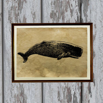Big whale print Marine art Fish illustration Old paper home decor 8.3 x 11.7 inches
