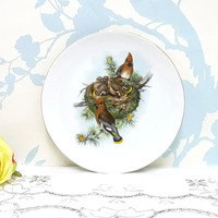 Japanese Saji Waxwing Bird Plate, Fine China, Decor or Wall Plate, Cabinet Plate, Oriental Decor, Vintage Japanese, Made in Japan, Homewares