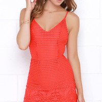 Midsummer Dreamin' Red Orange Lace Dress
