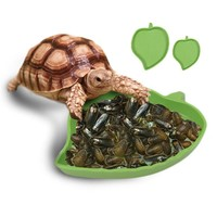 Leaf Shaped Food/Water Bowls for Reptiles, Tortoise, Snakes, Spiders, or Lizards