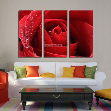 Extra Large Wall Art 5 Different Color Rose Canvas Print- Giclee Print Huge 3 Panel Rose Canvas Art Print - Framed Love Flower Floral - MC224