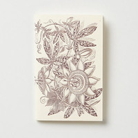 Passionflower Hummingbird Journal