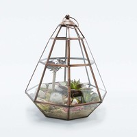 Urban Grow Triangle Glass Terrarium - Urban Outfitters