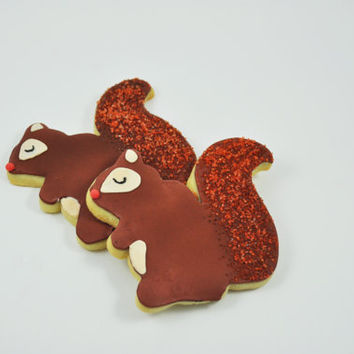 Squirrels -  Autumn Cookies - Decorated Iced Sugar Cookies - Fall - Forest - Half a Dozen