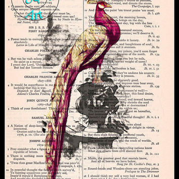 Red Peacock Standing on a Pot Drawing Art Beautifully Upcycled Vintage Dictionary Page Book Art Print, Bird Art Print