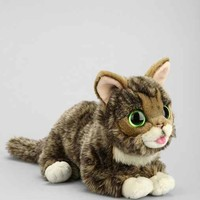 Lil BUB Plush Toy - Assorted One
