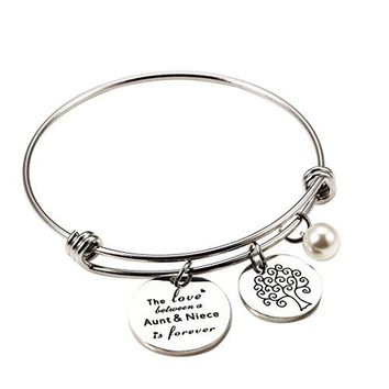 AUGUAU Meibai The Love Between a Aunt and Niece is Forever Charm Expandable Bracelet Bangle Gift for Aunt & Niece
