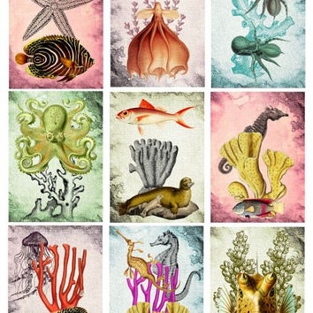 fish squid sea life Digital Collage Sheet Printable Instant Download 2.5x3.5 inch size Jewelry holders Gift Tags Paper goods scrapbook