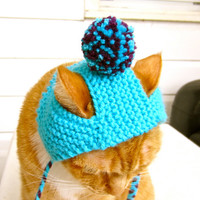 Cat Hat Costume - Teal and Purple Pom Pom
