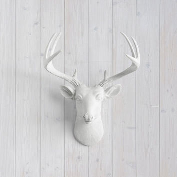 The MINI Virginia white Faux Taxidermy Resin Deer Head Wall Mount | white Stag w/ Colored Antlers