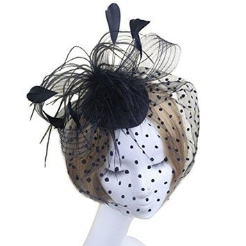 Tinksky Retro Style Bird Cage Mesh Bridal Face Veil Feather Fascinator Hair Clip Wedding Valentines Day Hair Accessory Black OS
