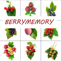 Instant download Memory game, Memory with real pictures, berry memory, berry pictures, handmade memory, DIY memory, printable party game