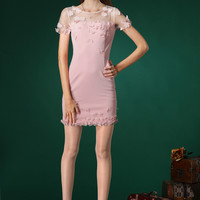 Pink Embroidered Lace Bodycon Dress