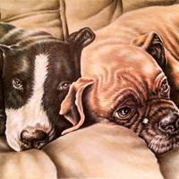 Personalized pet drawing in color with TWO PETS, Dog Portrait, Personalized Pet Portrait, pencil portrait, Pet Memorial, Photos to Drawing
