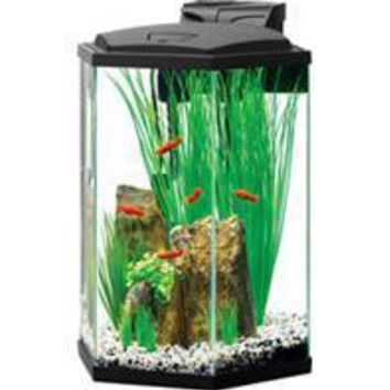 Aqueon Products - Glass - Premium Led Hexagon Aquarium Kit With Plant Cup