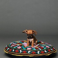 Free People Embroidered Krishna Dog Bed