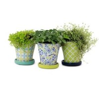 Norcal Pottery, 4 in. Ceramic Partridge Vase Planter Assortment, 100507557 at The Home Depot - Mobile