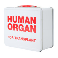 Human Organ Tin Lunch Box