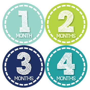 Baby Boy Monthly Milestone Stickers Style #367