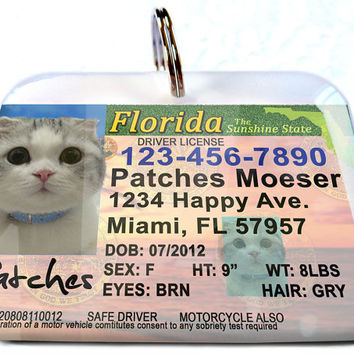 Florida driver license Personalized Custom ID Tags for dogs and cats Double Sided pet tags