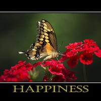 Happiness Inspirational Poster Art Poster