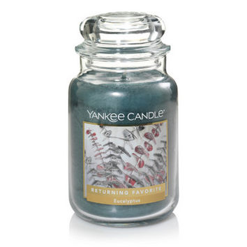 Eucalyptus : Large Classic Jar Candles : Yankee Candle