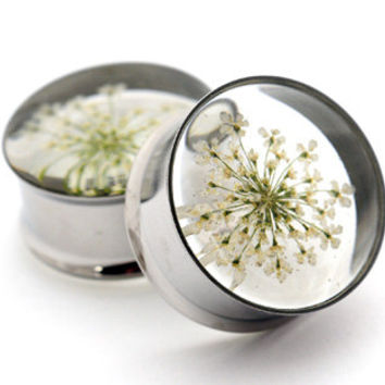 """White Queen Anne's Lace Embedded Flower Plugs gauges - 9/16"""", 5/8"""", 3/4"""", 7/8"""", 1"""""""