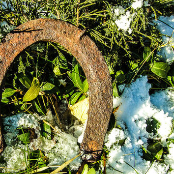 Lucky Plain Rusty Horseshoes - Set of 6 - Assemblage Art Collage Supply
