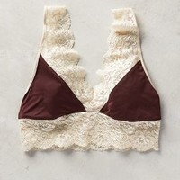 Timo Lace Knit Bralette in Wine Size: