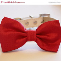 Candy Red Dog Bow tie, Cute Dog Bowtie with high quality White leather collar, Wedding dog accessories