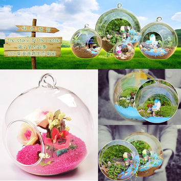 8cm Hanging Glass Flowers Plant Vase Stand Holder Terrarium Container