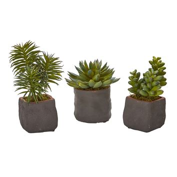 Mixed Succulent Trio Artificial Plant (Set of 3)