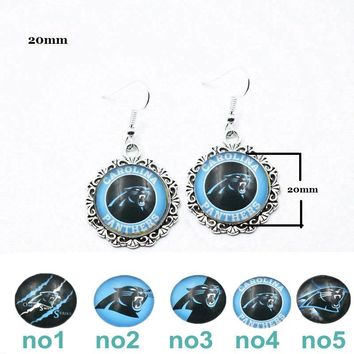 10 Pairs Glass Carolina Panthers Charm Drop Earrings Stainless Steel Ear Hook Earring