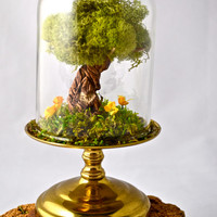 CUSTOM INITIALS Tree terrarium, beautiful moss terrarium- handmade by uniqueleeart