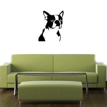 Boston Terrier Dog Puppy Wall Art Sticker Decal O137