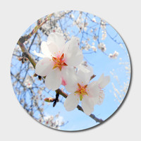 «Spring Blossoms», Exclusive Edition Disk by ARTbyJWP - From $85 - Curioos