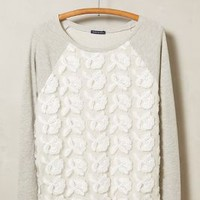 Petal-Pop Sweatshirt by Basil + Lola Grey