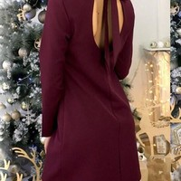 Casual Burgundy Plain Tie Back Cut Out Open Back Elegant Mini Dress
