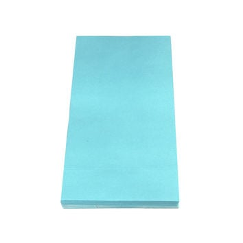 Solid Color Paper Treat Bags, 9-1/2-Inch x 5-Inch, 12-Piece, Light Blue