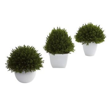 Silk Flowers -Mixed Cedar Topiary Collection -Set Of 3 Artificial Plant