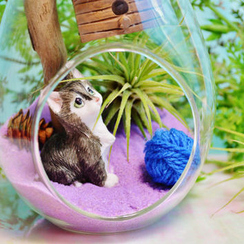 Kitty Terrarium ~ Large Teardrop Glass Terrarium Kit with Air Plant ~ Driftwood ~ Cat ~ Ball of Yarn ~ Birdhouse ~ Gift for her ~ Meow Meow