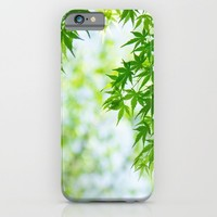 Green leaves of Japanese maple iPhone & iPod Case by Yumehana Design Fine Art Photography