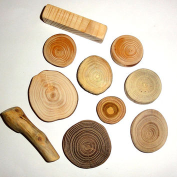 Wooden mix blanks slices, Wood mix tags, Rustic decor, Tree log coasters, Assorted branch slices, unique. Natural jewelry supplies findings