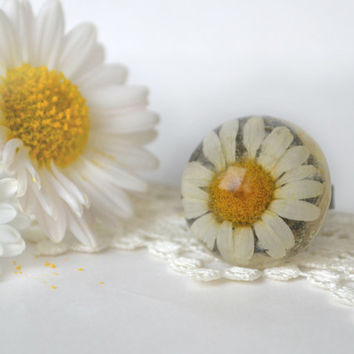 Real flower ring - camomile flower - real plants ring - pressed flower ring - botanical ring - nature jewelry - camomile in resin -r0016