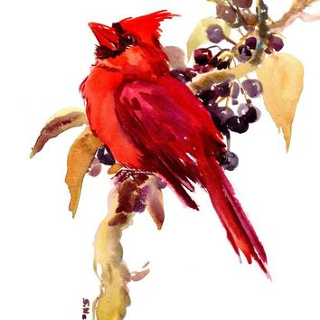 Cardinal bird artwork, original art, painting, watercolor, cardinal bird