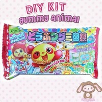 Kracie Gummy Animal DIY Kit